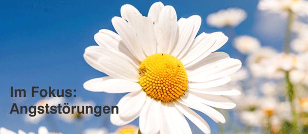 Psychotherapie Heilbronn Maier, Bachblüten, Homöopathie bei Angststörungen, Panikattacken, Panikstörung, Phobie, Agoraphobie, Flugangst