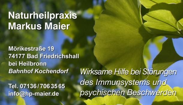 Heilpraktiker Homöopathie Schüssler-Salze Stuttgart